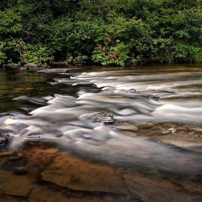 Waters Flow Series